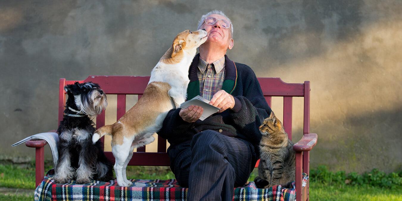 Persone anziane ed animali domestici: un connubio che migliora la vita