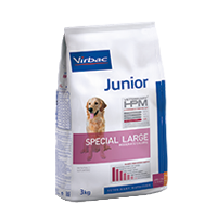 Junior Dog Special Large - Cani large & medium